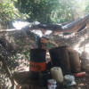 Destruidos tres laboratorios para el procesamiento de pasta base de coca en el Cauca
