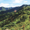 Los dividendos de la paz en el Cauca