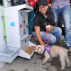 Primer 'comedog' se instala en Popayán