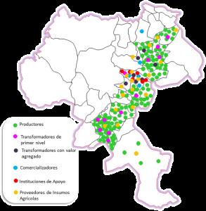 Se concentra principalmente en la región del Macizo Colombiano, con los municipios de Santa Rosa, Bolívar, Almaguer, La Vega, Rosas y otros municipios cercanos: Sotará, Puracé, Toribío, Totoró, Silvia, Caldono y Jambaló. /Fuente: Cámara de Comercio del Cauca