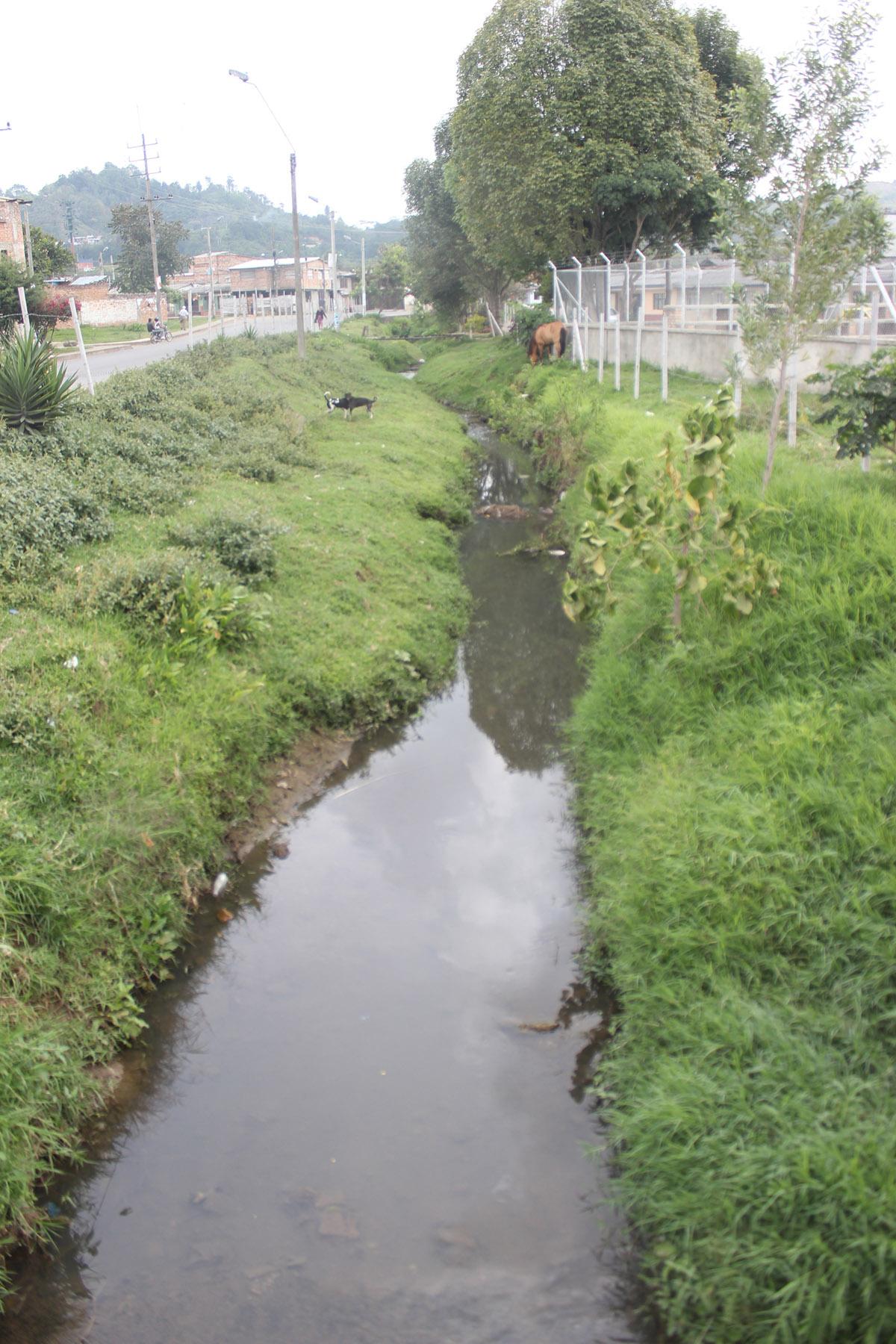 Recuperación de las cuencas como El Río Ejido hacen parte del proyecto / Imagen suministrada.