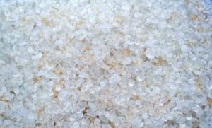 Esta semana se anunció que el proyecto de empaques biodegradables será postulado para la premiación de este año.